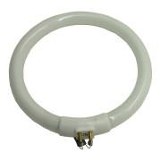 Sparepart Lampu Cody 4 Pin-1